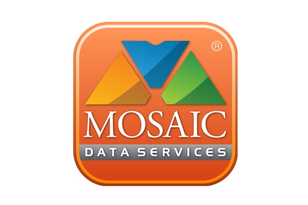 MOSAIC DATA - BELT